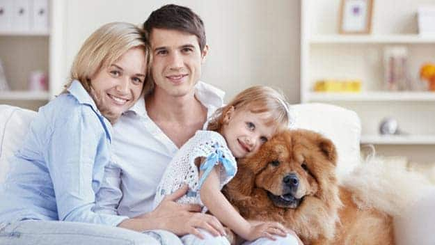 Wills & Trusts dog-young-family Direct Wills Barton-le-Clay